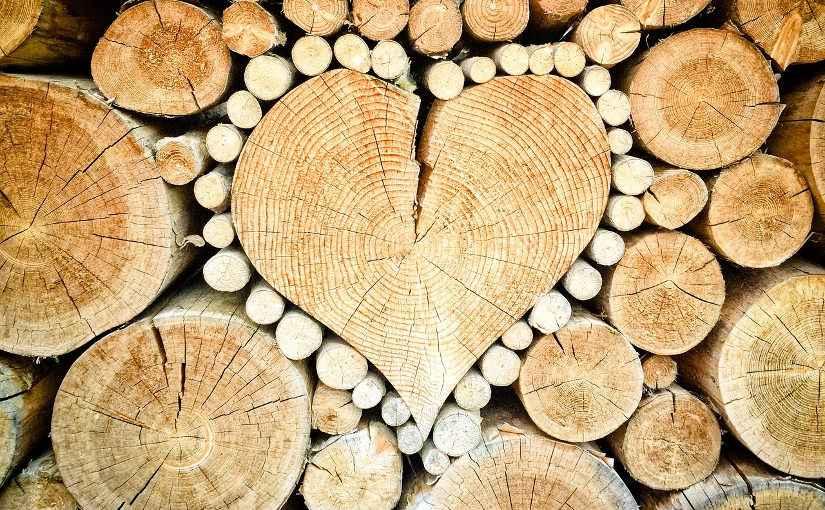 Какую бензопилу купить для заготовки дров